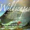 Peter Andrew Jones Rural Dreams Ruraul Wildlife Art