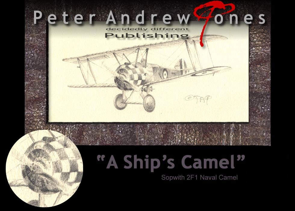 Peter Andrew Jones Painted Eagles Aviation Art Ship's Camel F1
